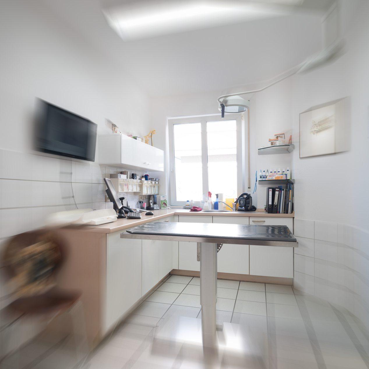 dr roland stirl fachtierarzt f r kleintiere ihre. Black Bedroom Furniture Sets. Home Design Ideas